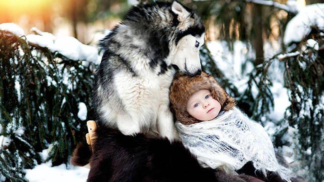 Perro cuidando bebe 5
