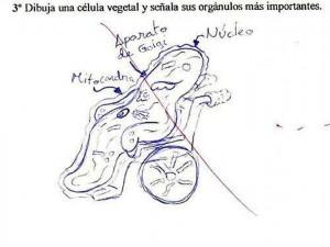 examen6