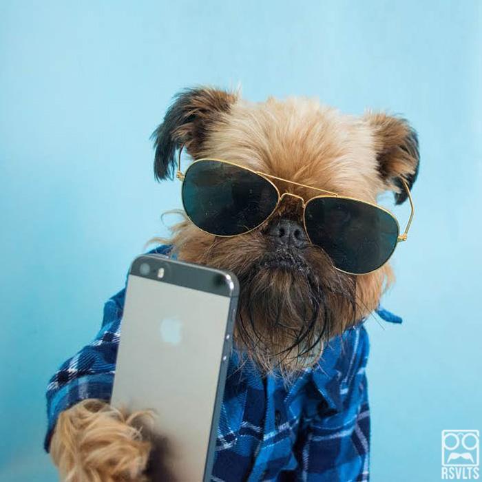 selfie-del-perrito