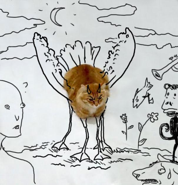 meme-foto-gato-dibujos-divertidos-3