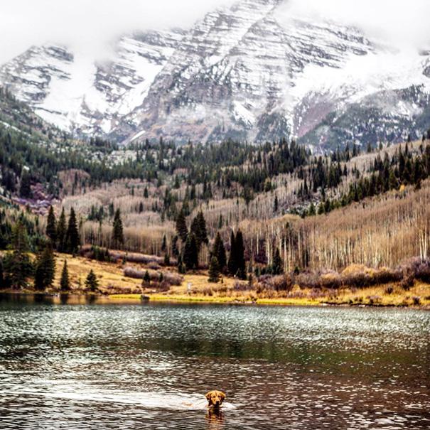 perro-aspen-viajes-aventura-hunter-lawrence-17