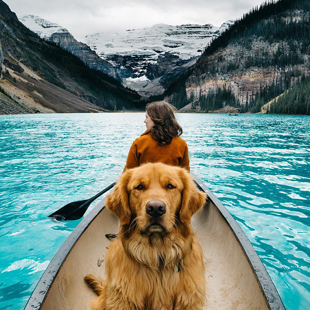 perro-aspen-viajes-aventura-hunter-lawrence-9