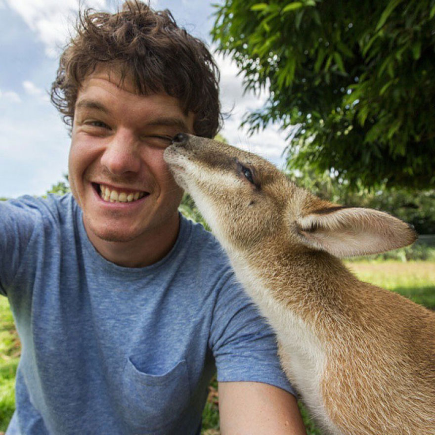 experto-selfies-animales-allan-dixon-1