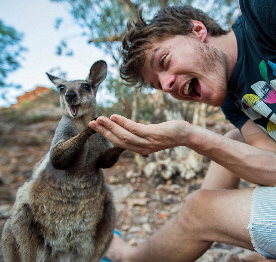 experto-selfies-animales-allan-dixon-11