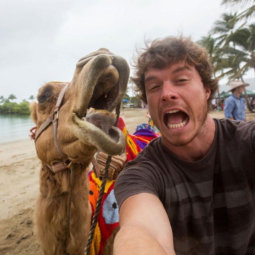 experto-selfies-animales-allan-dixon-2