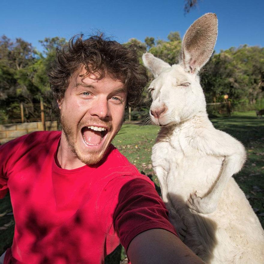 experto-selfies-animales-allan-dixon-5
