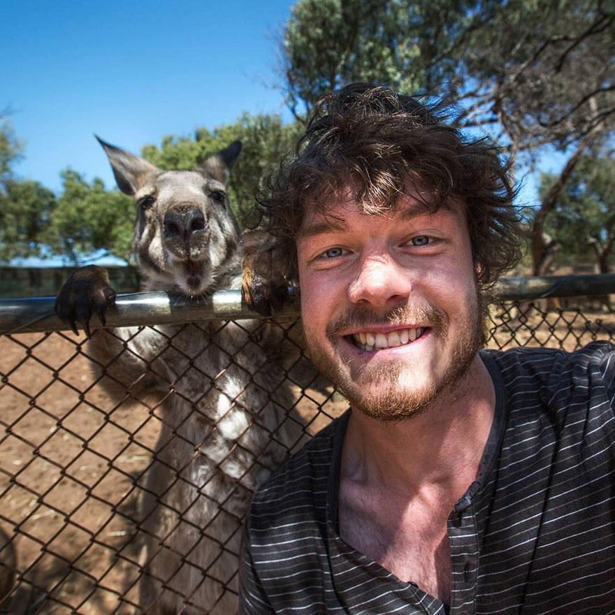 experto-selfies-animales-allan-dixon-6