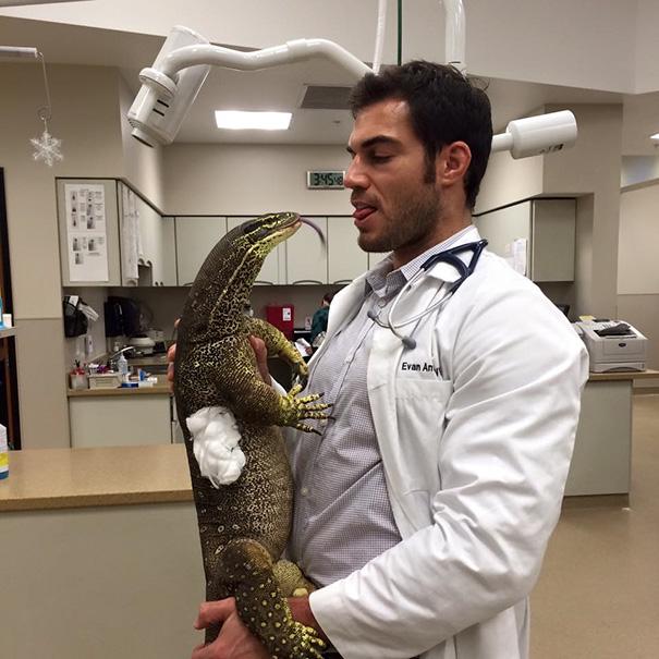 ventajas-trabajar-animales-veterinaria-10