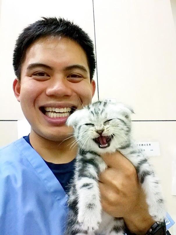 ventajas-trabajar-animales-veterinaria-13