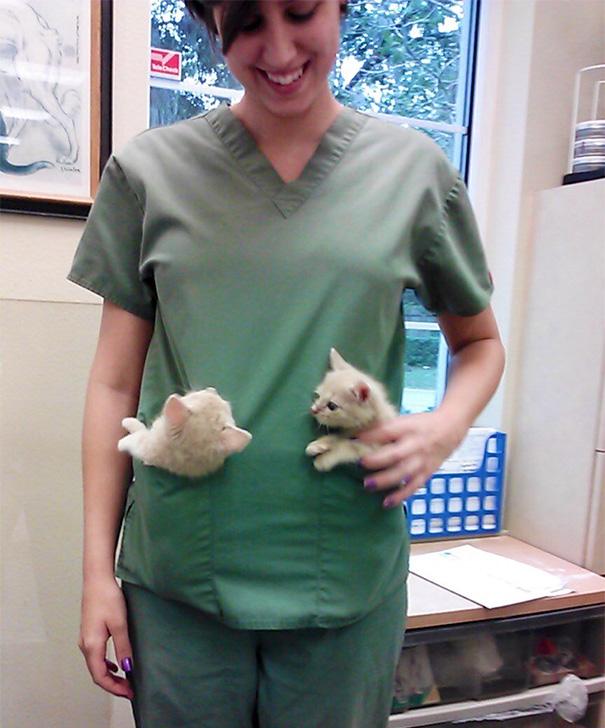 ventajas-trabajar-animales-veterinaria-8