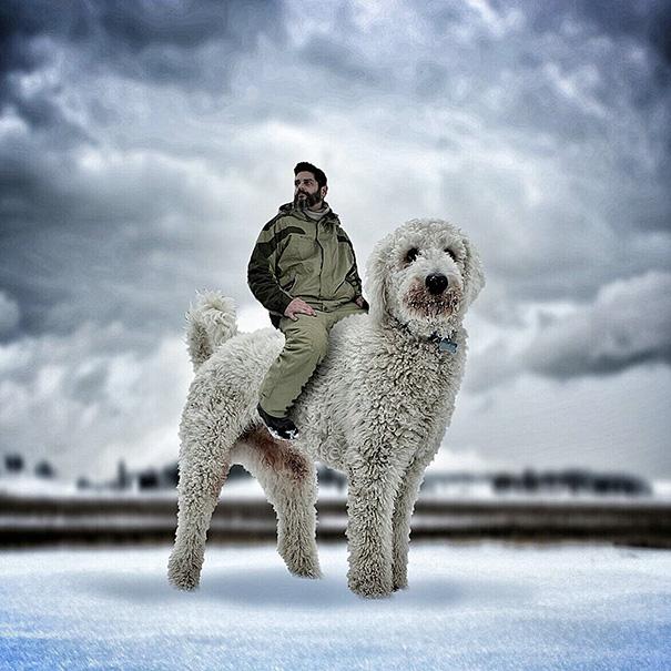 aventuras-juji-perro-gigante-photoshop-christopher-cline-2