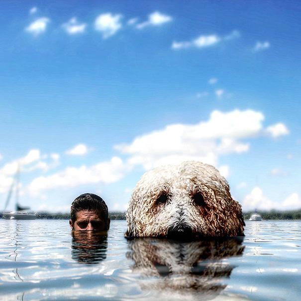 aventuras-juji-perro-gigante-photoshop-christopher-cline-3