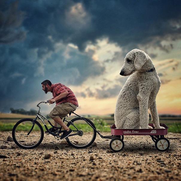 aventuras-juji-perro-gigante-photoshop-christopher-cline-5