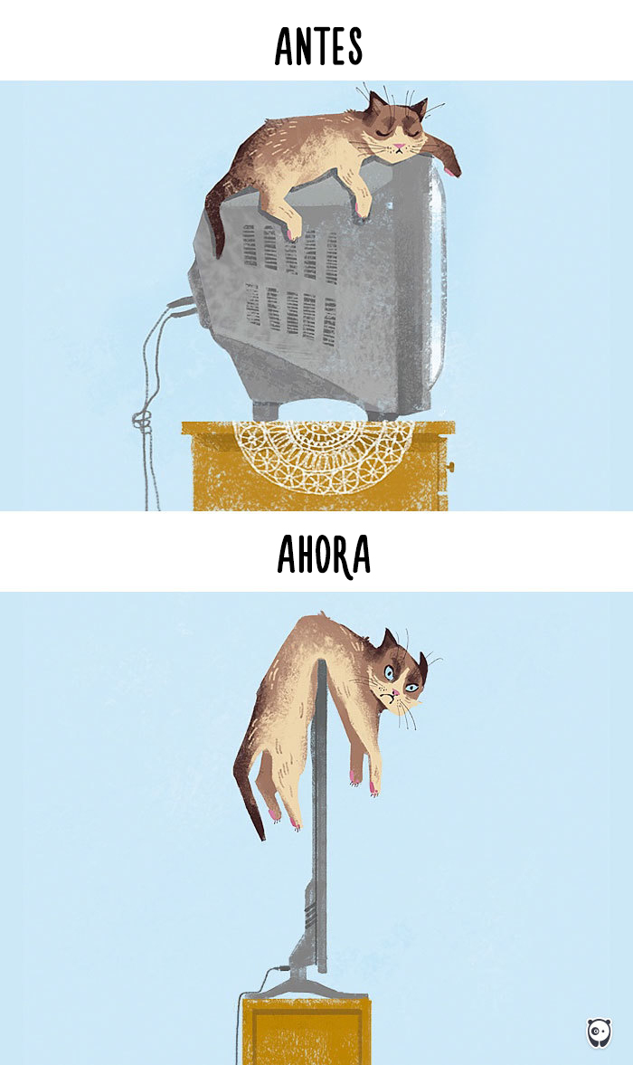 antes-ahora-gatos-tecnologia-1