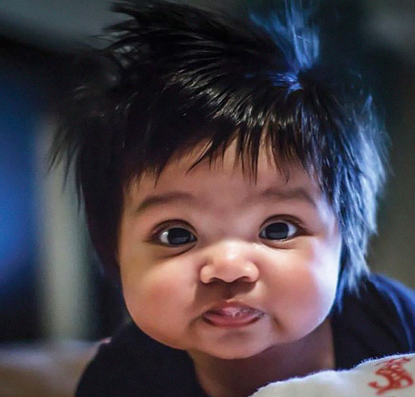 bebés-peludos-divertidos-3