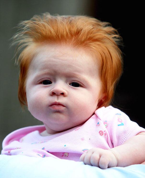 bebés-peludos-divertidos-5