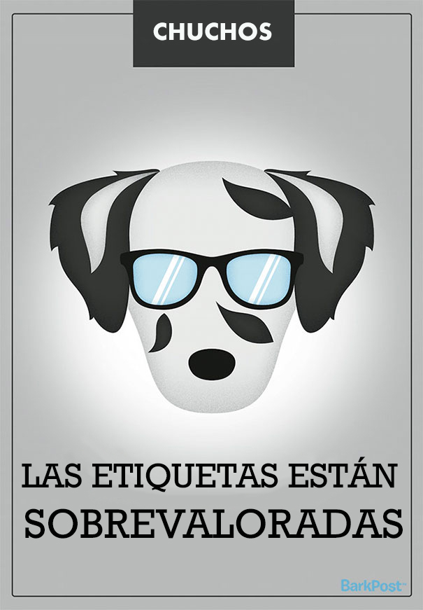 ilustraciones-eslogan-razas-perros-10