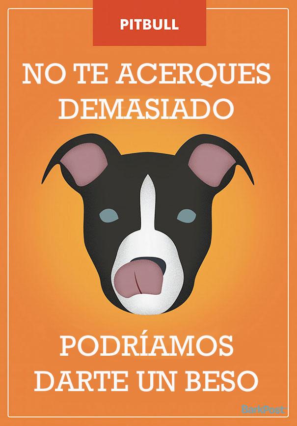 ilustraciones-eslogan-razas-perros-11