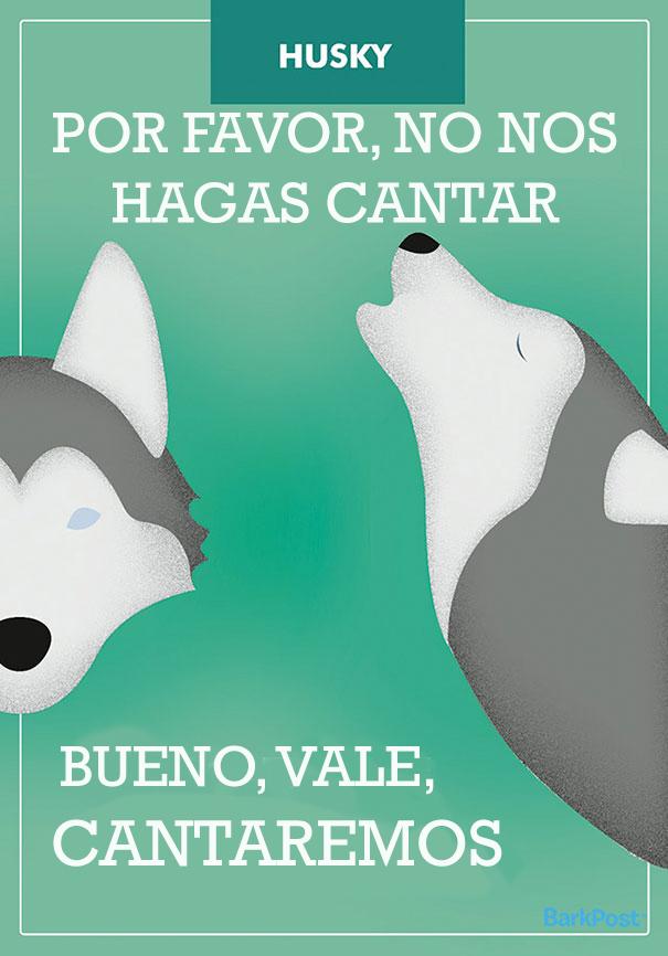 ilustraciones-eslogan-razas-perros-12