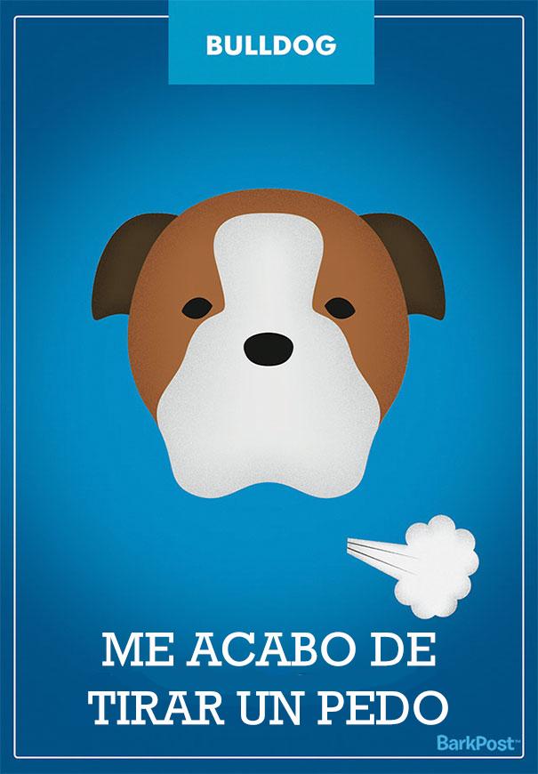ilustraciones-eslogan-razas-perros-2