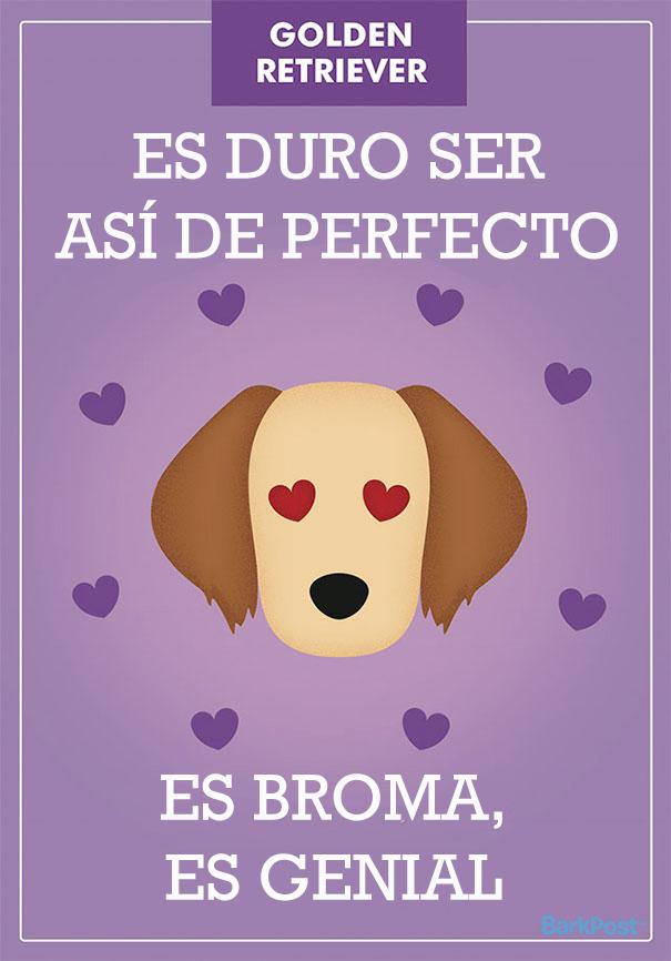 ilustraciones-eslogan-razas-perros-5