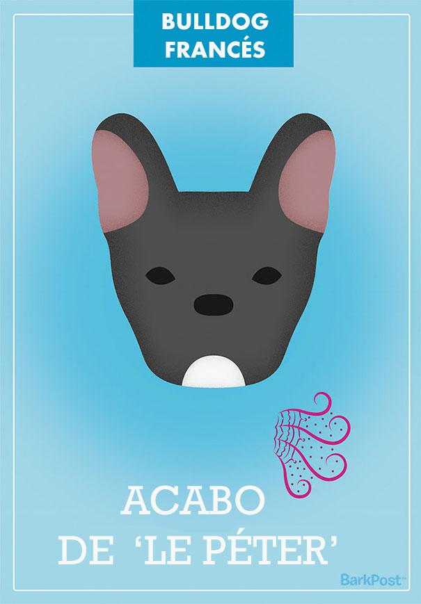 ilustraciones-eslogan-razas-perros-6
