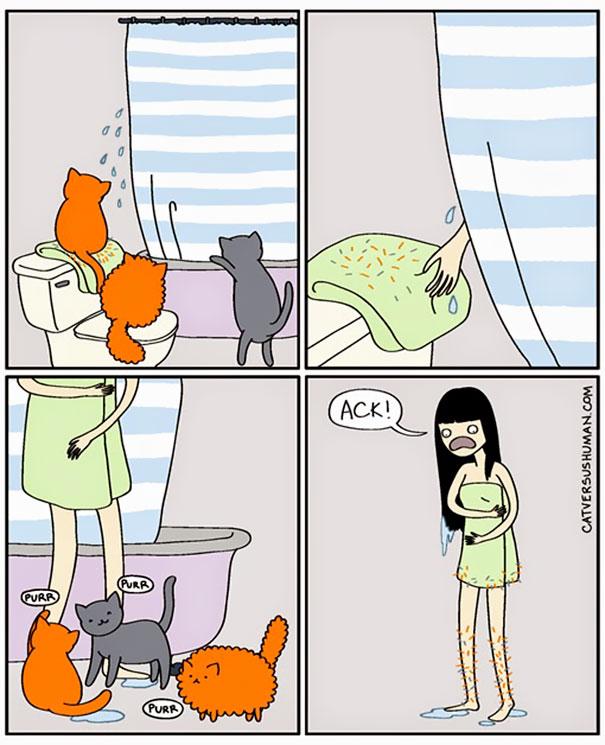 comics-gatos-catversushuman-10