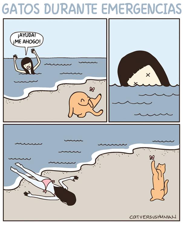 comics-gatos-catversushuman-2