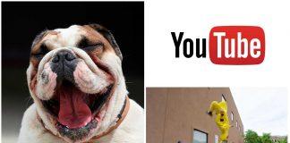 7 canales de Youtube divertidos y asombrosos que no puedes perderte